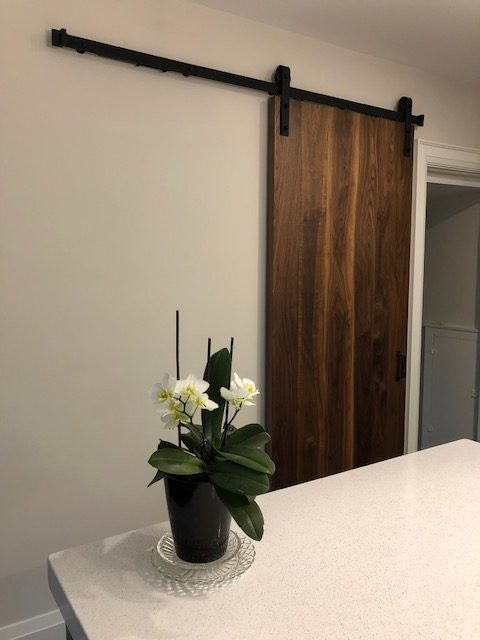Solid Walnut Barn Door